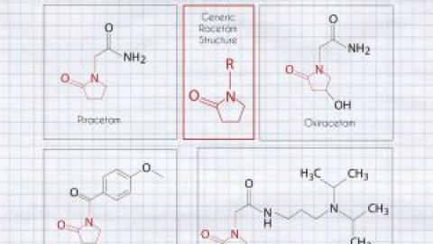 Piracetam vs Aniracetam vs Oxiracetam: Guide to the Racetam Family