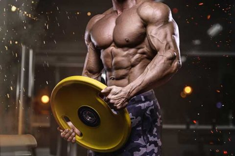 Arachidonic Acid Supplement: #1 Effective For Bodybuilding?